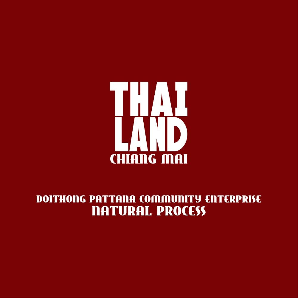 Thailand | Doi Thong, Chiang Mai, Natural Process / ORGANIC