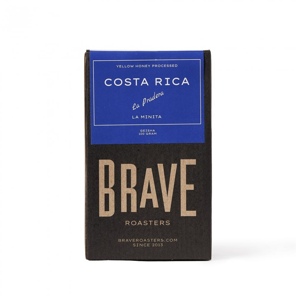 Costa Rica | La Pradera / Geisha, Yellow Honey Processed